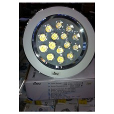 Ceiling Light 12 watt HILED